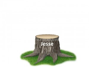 stump of Jesse